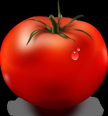 NicePng_tomato-slice-png_1531330