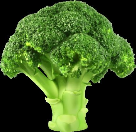 NicePng_vegetables-png_245487